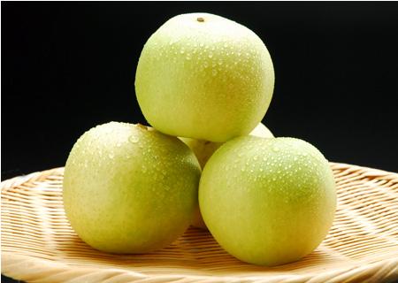 瑞々しい果肉、20世紀梨の販売スタート!