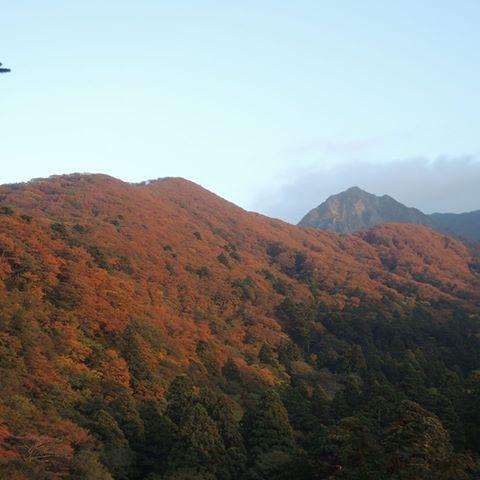 少しづつ里に向かって紅葉が進んでいます!