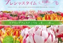 まちに待った花回廊の『スプリング・フェスティバル 』 開催中♪